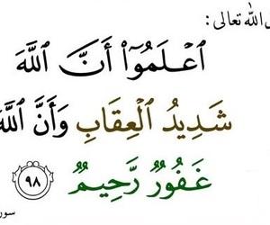 سورة المائدة and آية ٩٨ image