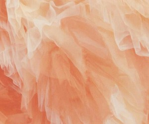 aesthetic, pastel, and peachy image