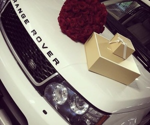 rose, car, and white image