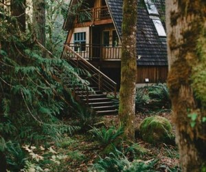 forest, house, and home image