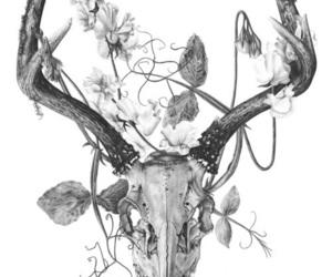 flowers, deer, and skull image