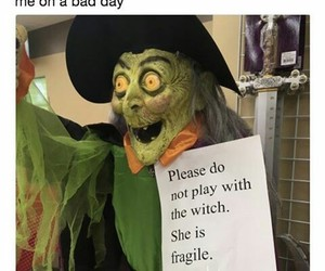 witch, fragile, and hilarious image