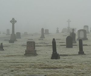 cemetery, graveyard, and fog image