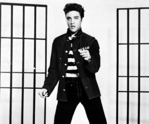 Elvis Presley, elvis, and jailhouse rock image