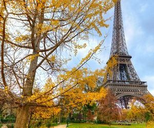 paris, france, and autumn image