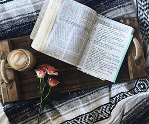 livro and biblia image