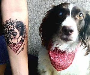 dog, animal, and tattoo image