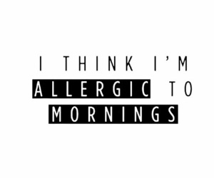 morning, allergic, and monday image