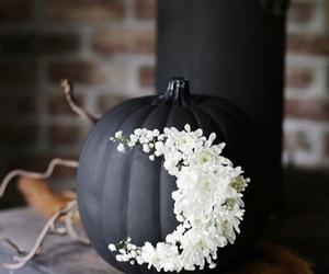 pumpkin, Halloween, and black image