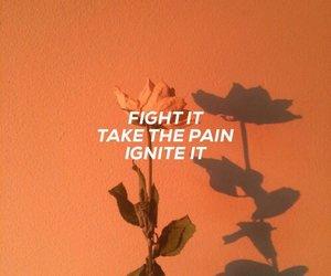 orange, tumblr, and quote image