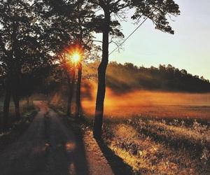 nature, amazing, and autumn image