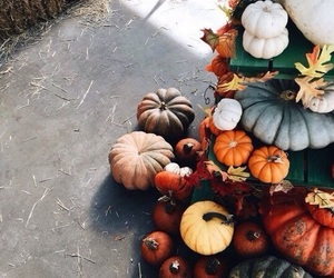 days, fall, and pumpkin image