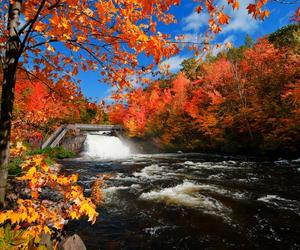 autumn, water, and canada image
