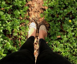 ballet flats, grass, and outdoors image