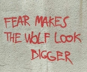 fear, quotes, and wolf image