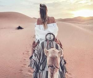 camel, Sahara, and summer image