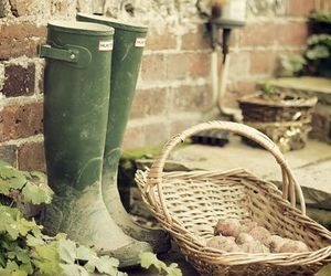 country life and gardening image