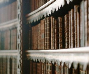 aesthetics, books, and library image