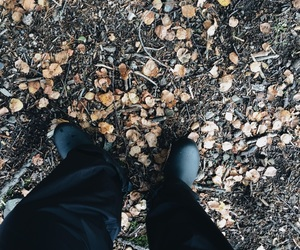 autumn, boots, and colors image