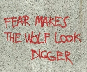 fear, wolf, and quotes image