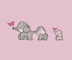 wallpaper, elephant, and background image