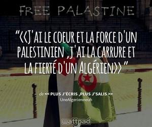 book, citation, and free palestine image