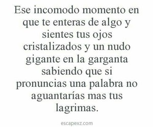 frases, lágrimas, and cry image