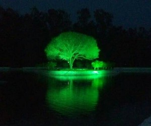 heaven, lake, and tree image