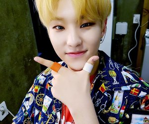 handsome, soonyoung, and Seventeen image