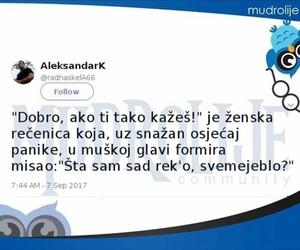 balkan, ti, and twitter image