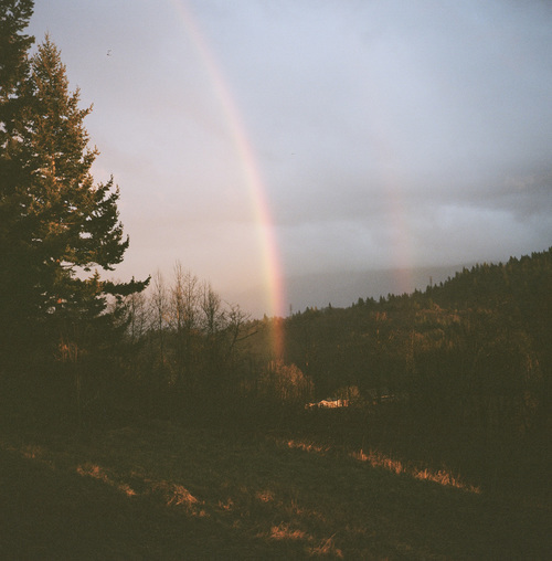 rainbow and nature image