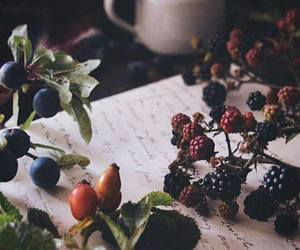 autumn, tea, and berries image