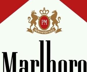 cigarette, brand, and marlboro image
