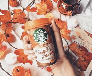 aesthetic, autumn, and starbucks image