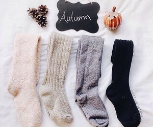 autumn, socks, and fall image