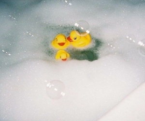 35mm, duck, and bath image