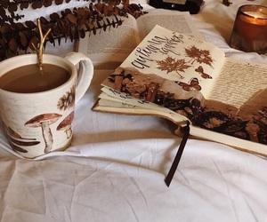 autumn, books, and cozy image