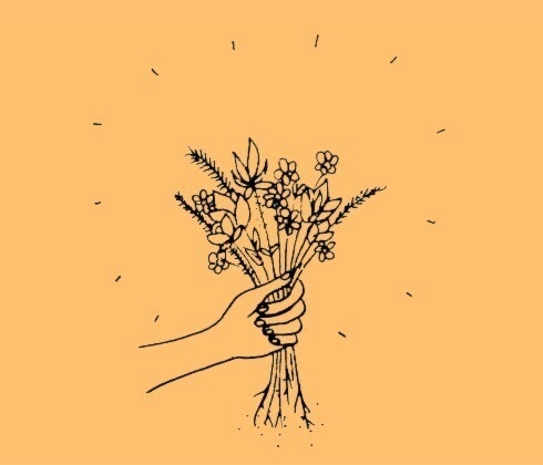 flowers, header, and tumblr image