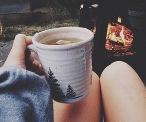 autumn, tea, and cozy image