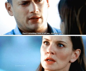 quotes, series, and prison break image