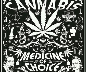 cannabis, weed, and medicine image