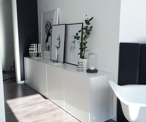 decor, passage, and plant image