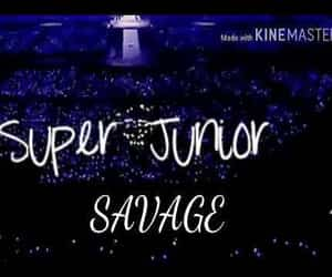 video, superjunior, and evanescecover image