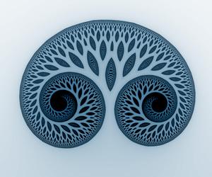 born, human, and patterns image