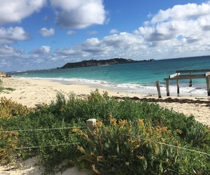 aesthetic, beach, and australia image