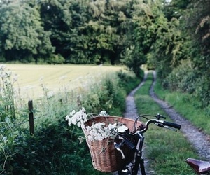 campagne, trees, and bicyclette image