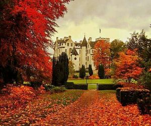 autumn, castle, and red image