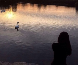 cygne, girl, and sun image