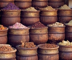 spices and photography image