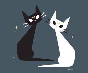 artemis, cat, and luna image